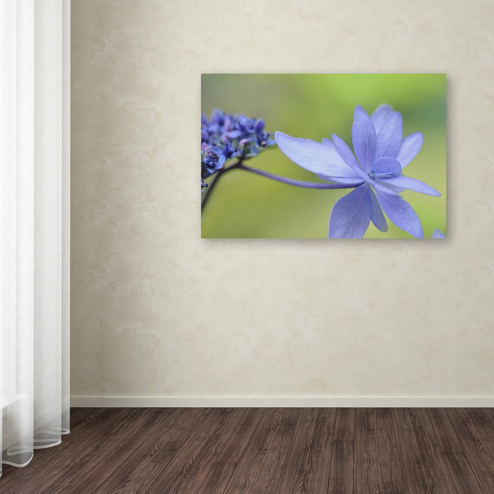 "Trademark Fine Art 12 in. x 19 in. ""Blue Hydrangea"" by Cora Niele Printed Canvas Wall Art"