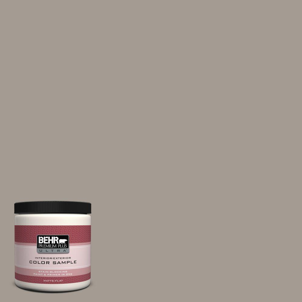8 oz. #BXC-54 River Pebble Interior/Exterior Paint Sample