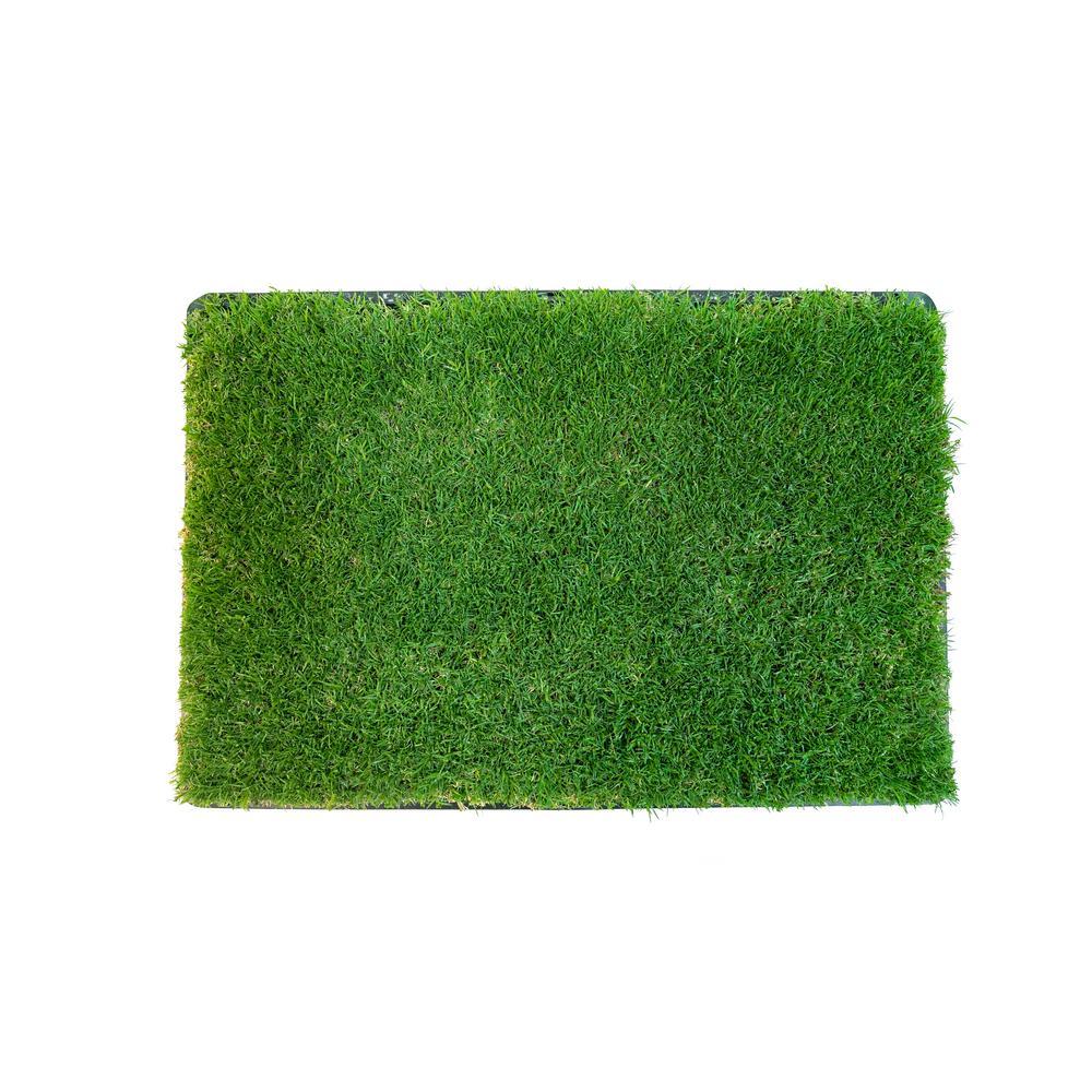 Gotta Go Grass