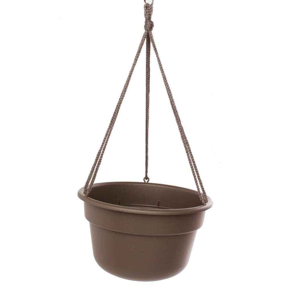 Bloem 12 in. Curated Dura Cotta Plastic Hanging Basket