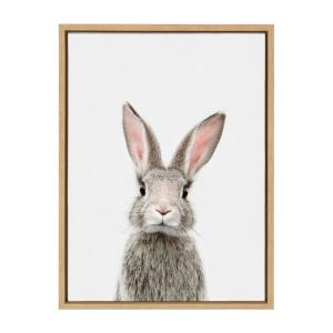 "Sylvie ""Animal Studio Female Rabbit"" by Amy Peterson Framed Canvas Wall Art"