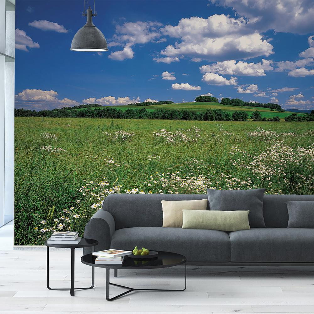 Komar 100 in x 145 in Meadow Wall Mural 8 254 The Home Depot
