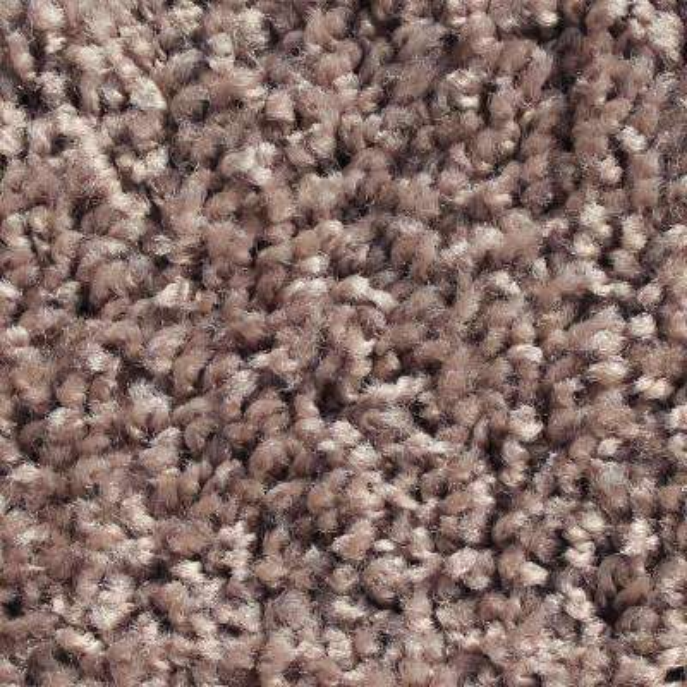Mid-Century Album 24 in. x 24 in. Residential Carpet Tile (12 Tiles / Case)