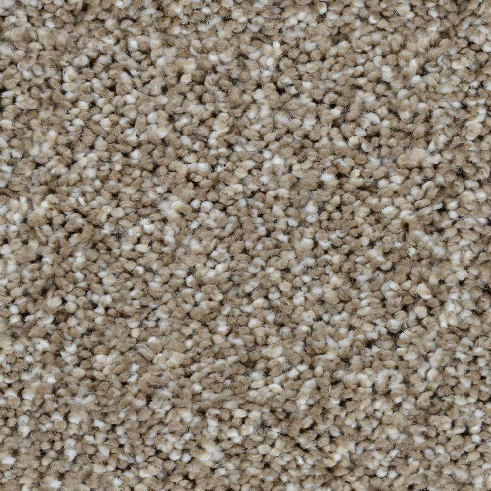 Home Decorators Collection Carpet Sample Trendy Threads
