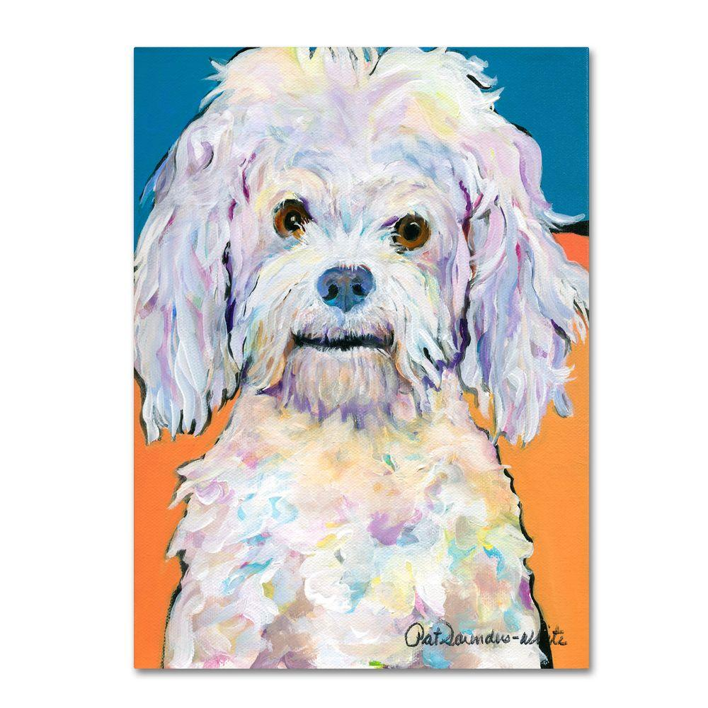 Trademark Fine Art 35 in. x 47 in. Lulu Canvas Art