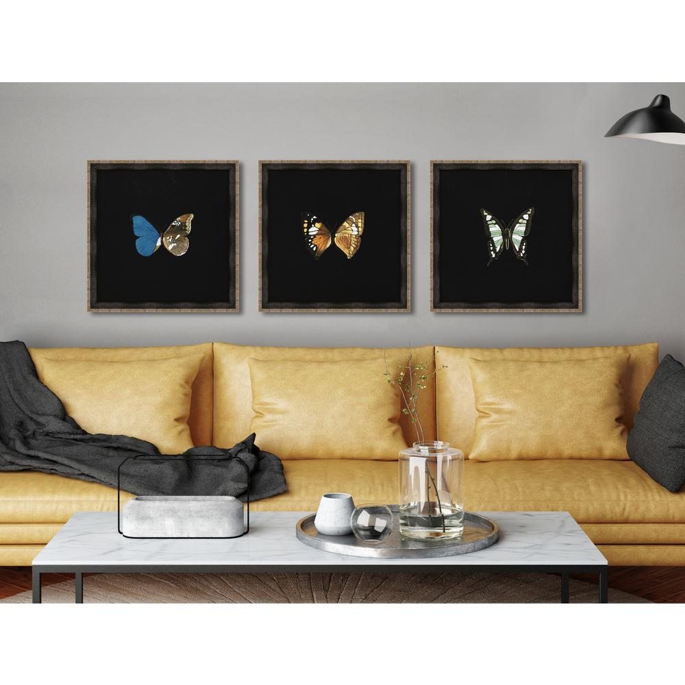 picture wall ideas hise 18 in x 18 in quot butterflies on black iv 13243