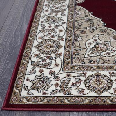 Bazaar Emy HD2587 Red/Ivory 5 ft. x 7 ft. Area Rug