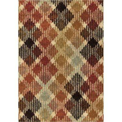 Checkered Path Multi Shag 5 ft. x 8 ft. Indoor Area Rug