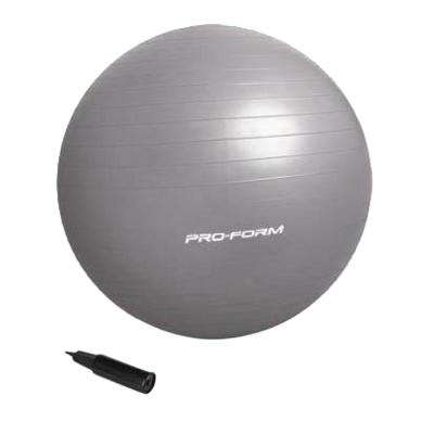 55 cm Anti-Burst Fitness Ball