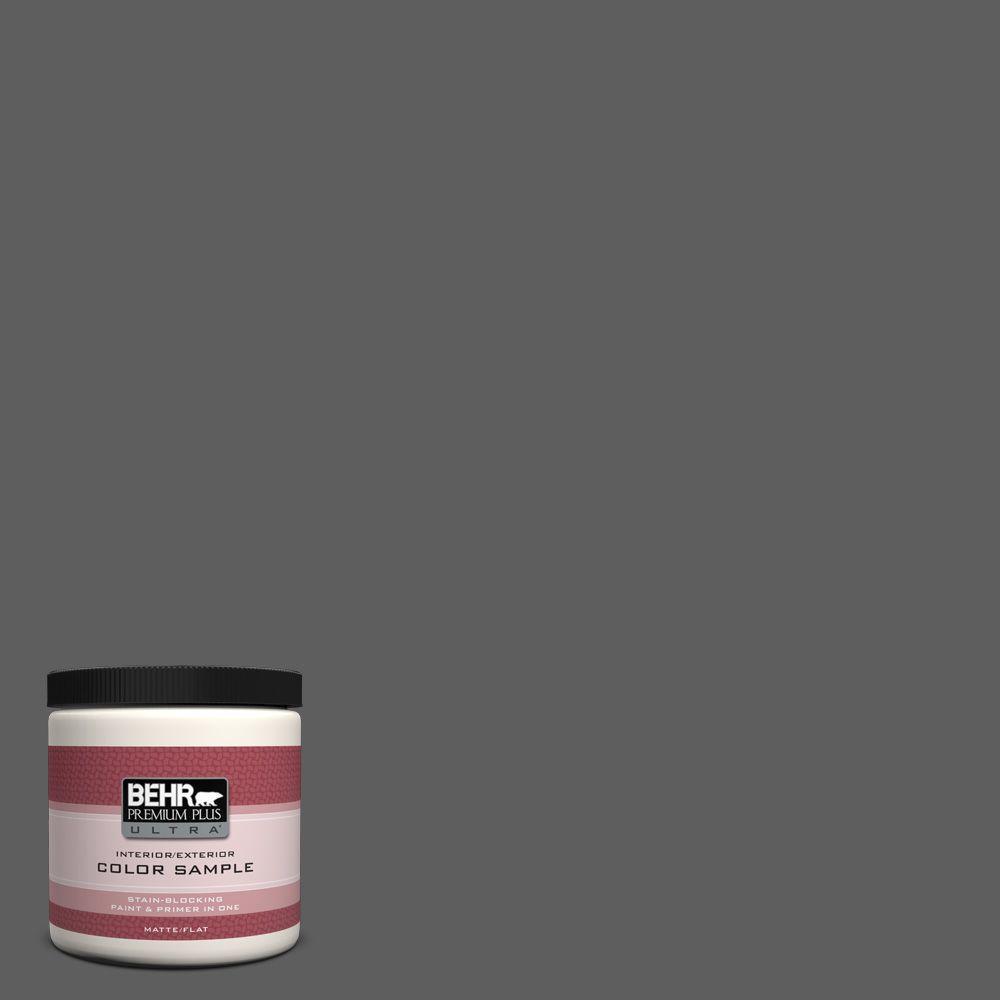 8 oz. #N520-6 Asphalt Gray Interior/Exterior Paint Sample