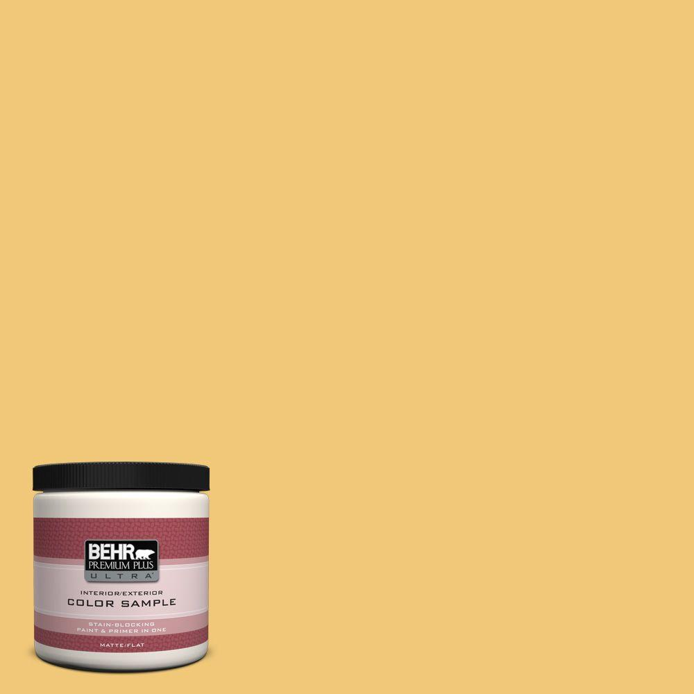 BEHR Premium Plus Ultra 8 oz. #T14-19 Sunday Afternoon Flat/Matte Interior/Exterior Paint Sample