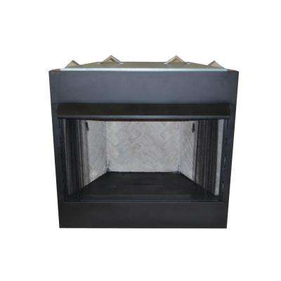 42 in. Vent-Free Natural Gas or Liquid Propane Circulating Firebox Insert