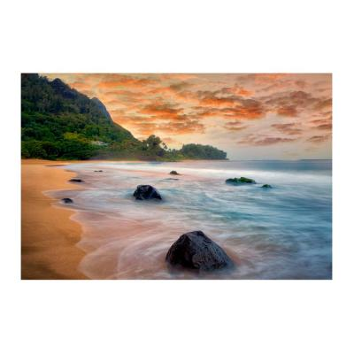 Hawaiian Beach by Colossal Images Canvas Wall Art 18 in. x 24 in.