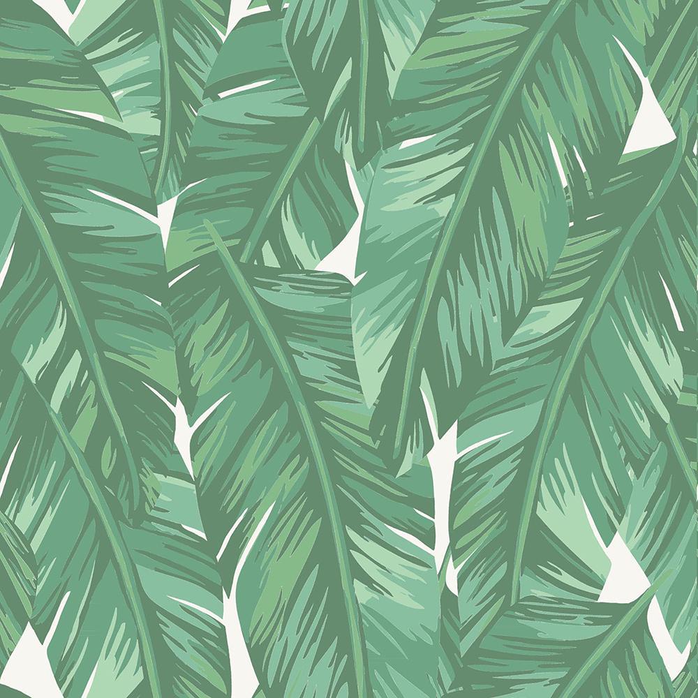 Dumott Green Tropical Leaves Green Wallpaper Sample