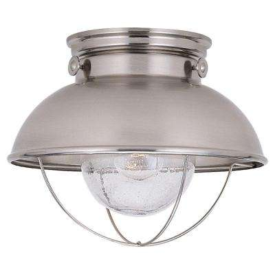 Sebring 1-Light Brushed Stainless Outdoor Ceiling Fixture