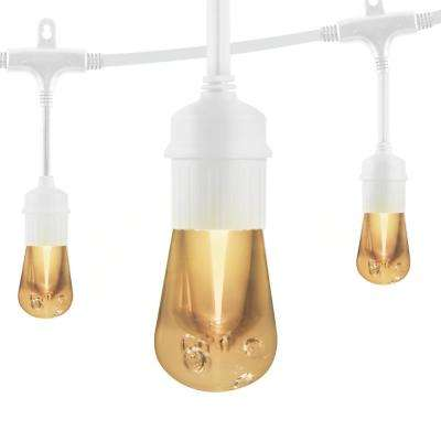 12-Bulb 24 ft. Vintage Integrated LED Cafe String Lights, White
