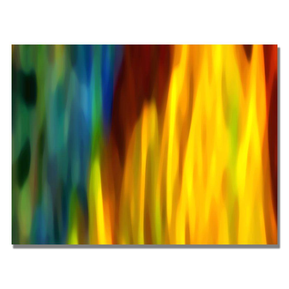24 in. x 32 in. Fire and Water Canvas Art