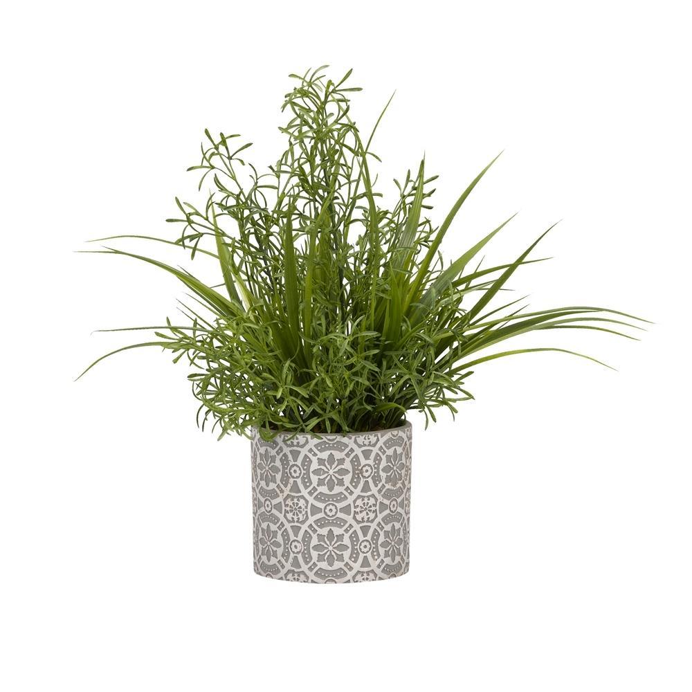 Indoor Wild Asparagus and Grass in Round Cement Planter