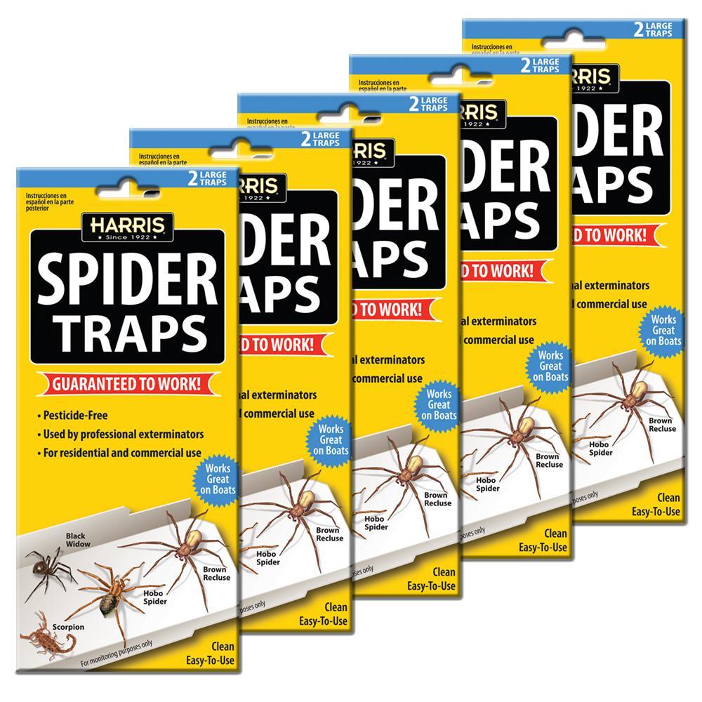 Spider Trap Value Pack
