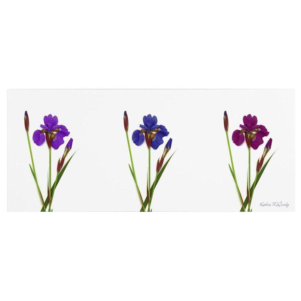16 in. 47 in. Siberian Iris Triptych Canvas Art