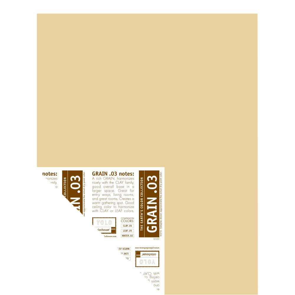 YOLO Colorhouse 12 in. x 16 in. Grain .03 Pre-Painted Big Chip Sample