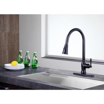Rodeo Single-Handle Pull-Out Sprayer Kitchen Faucet in Oil Rubbed Bronze
