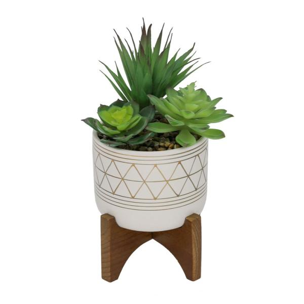10 in. Faux Succulents in Gold Hand Paint 5 in. Ceramic Footed Stand