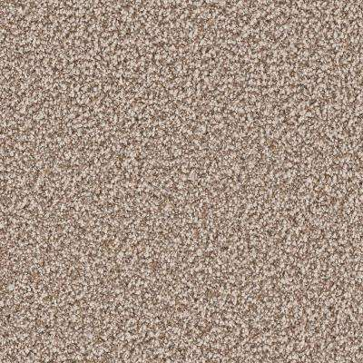 Carpet Sample - Gateway II - Color Ashley Texture 8 in. x 8 in.