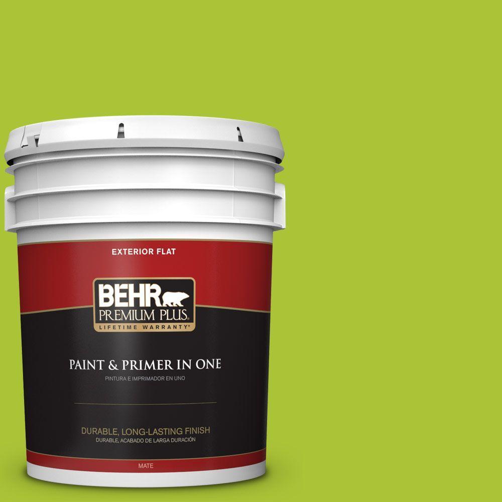 5-gal. #410B-6 Crisp Green Flat Exterior Paint