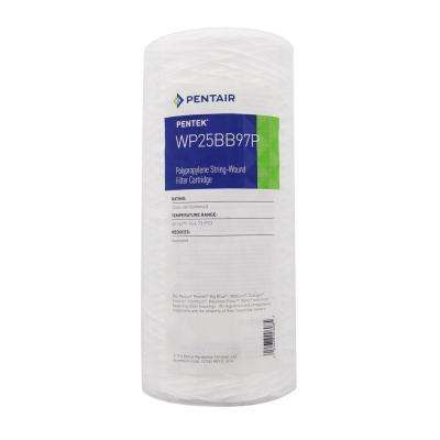 WP25BB97P Whole House Filter Replacement Cartridge