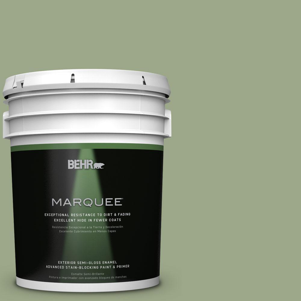 5-gal. #PPU11-7 Clary Sage Semi-Gloss Enamel Exterior Paint
