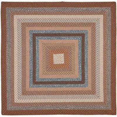Braided Brown/Multi 6 ft. x 6 ft. Square Area Rug