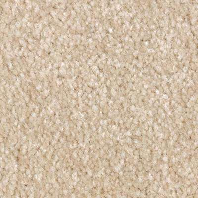 Carpet Sample - Best Wishes II - Color Nomadic Texture 8 in. x 8 in.
