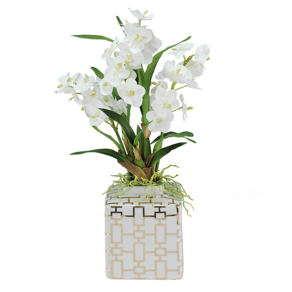 20 in. Vanda Orchid in Planter