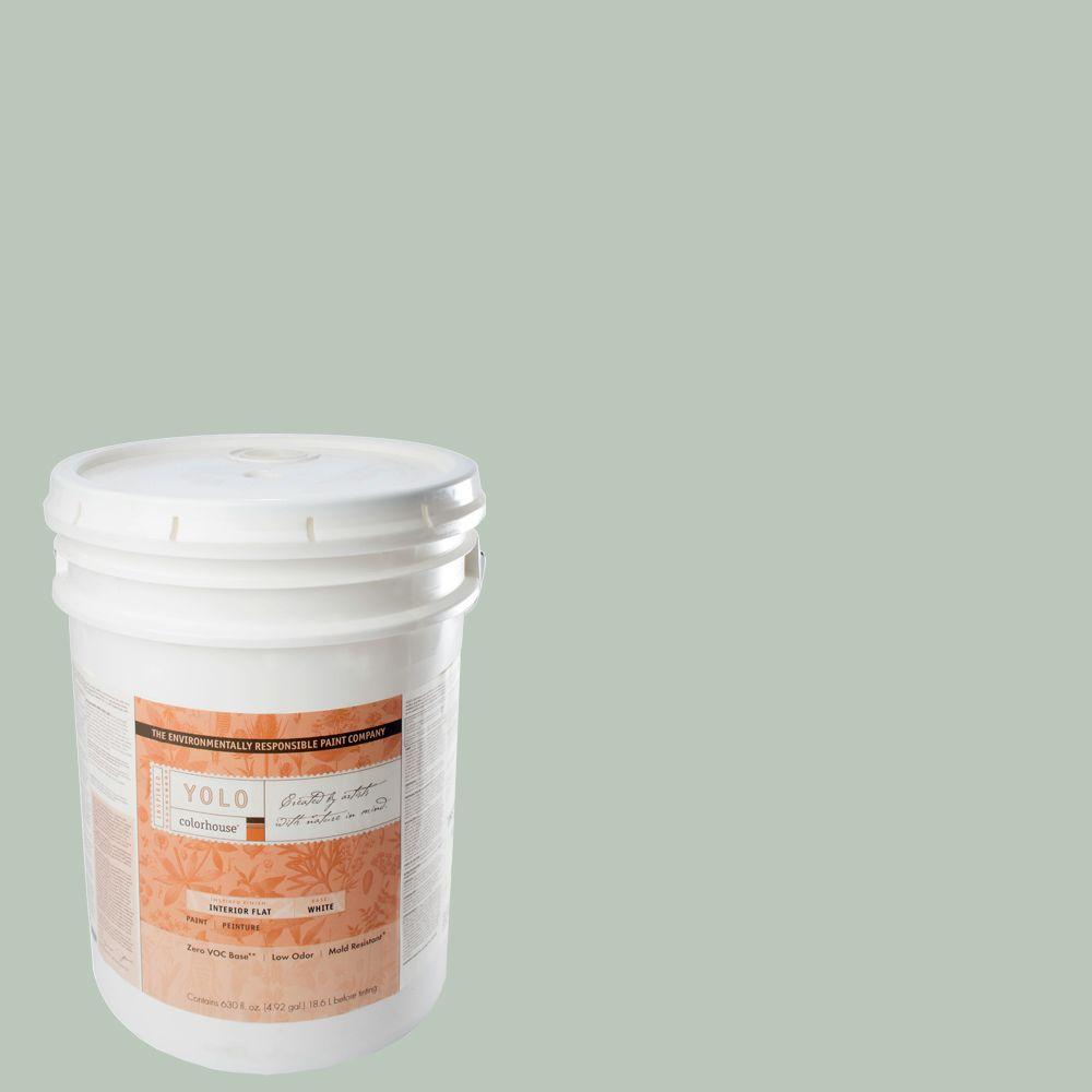 YOLO Colorhouse 5-gal. Water .02 Flat Interior Paint-DISCONTINUED