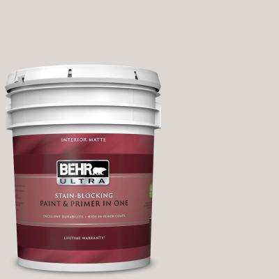 5 gal. #N320-1 Campfire Ash Matte Interior Paint and Primer in One