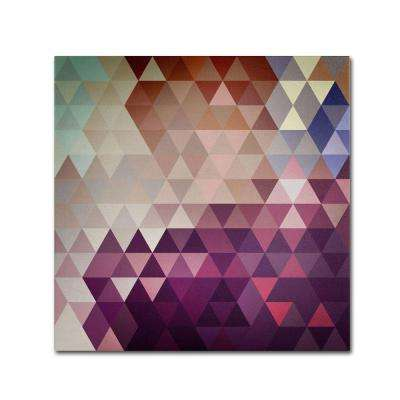 35 in. x 35 in. Trivector Canvas Art
