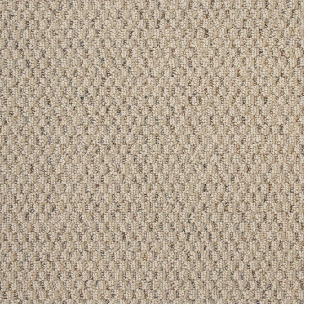 Carpet Sample Picture Color Hazelnut Berber 8 In X