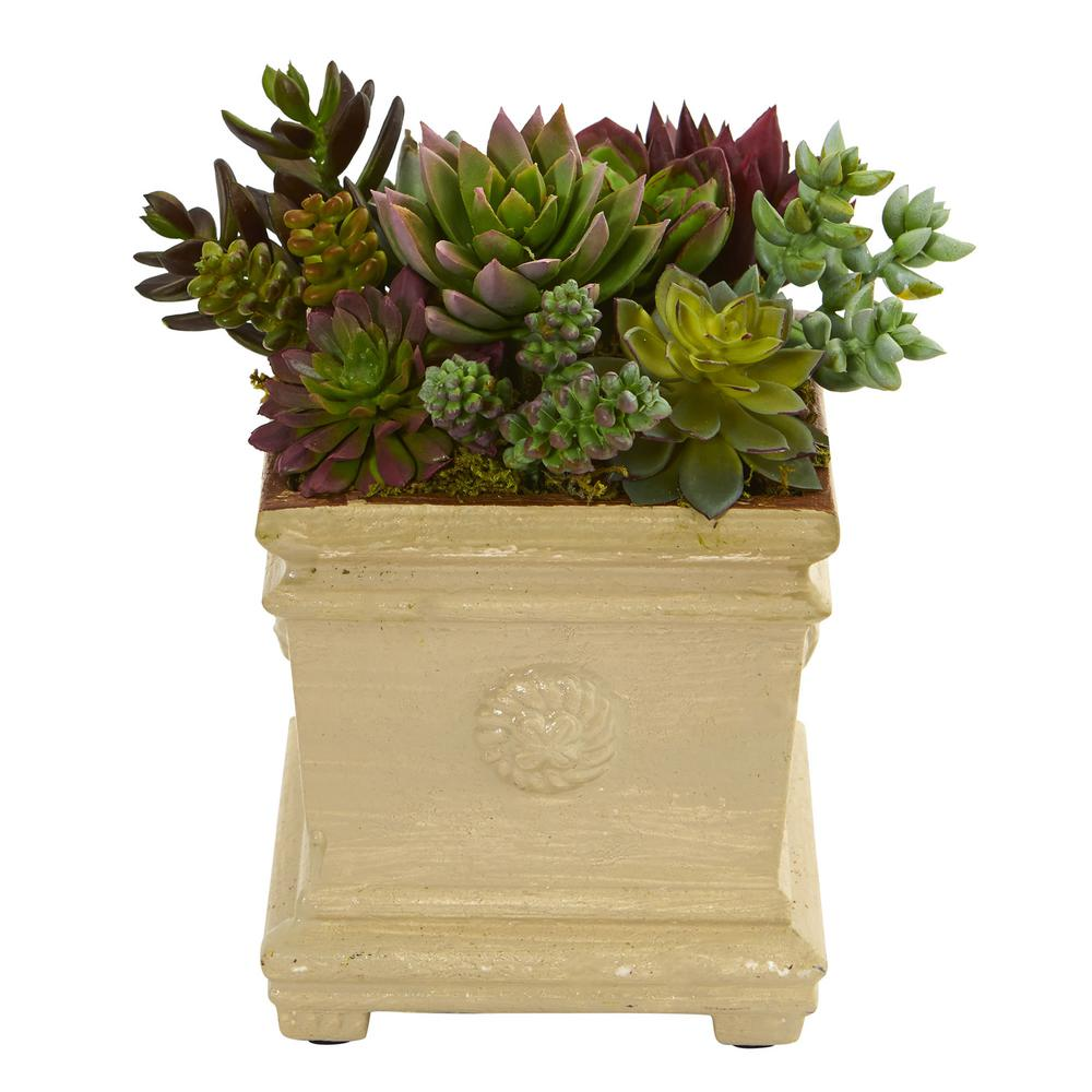 7.5 in. Mixed Succulent Artificial Plant in Decorative Vase