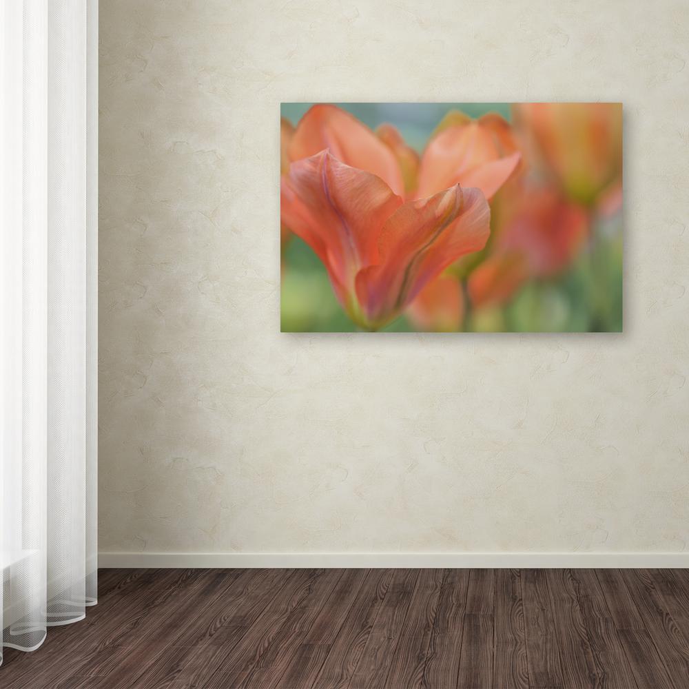 Trademark Fine Art 12 in. x 19 in. ''Orange Wings Tulips''