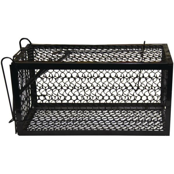 Catch and Release Humane Squirrel and Rodent Cage Trap