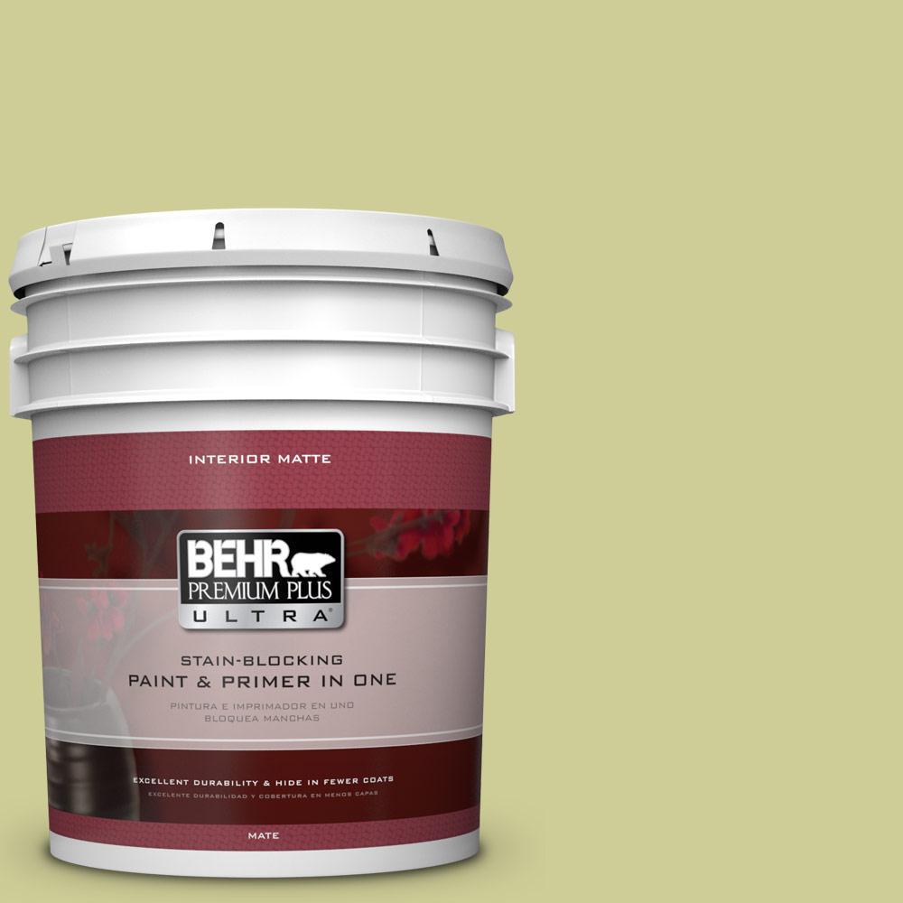 5 gal. #400D-4 Corn Husk Green Flat/Matte Interior Paint