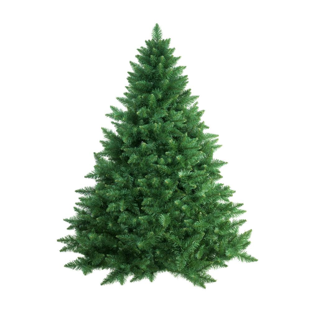 Online Orchards 5 ft. to 6 ft. Freshly Cut Douglas Fir Live Christmas Tree (Real, Natural, Oregon-Grown)