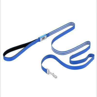 6 ft. Blue LED Dog Leash