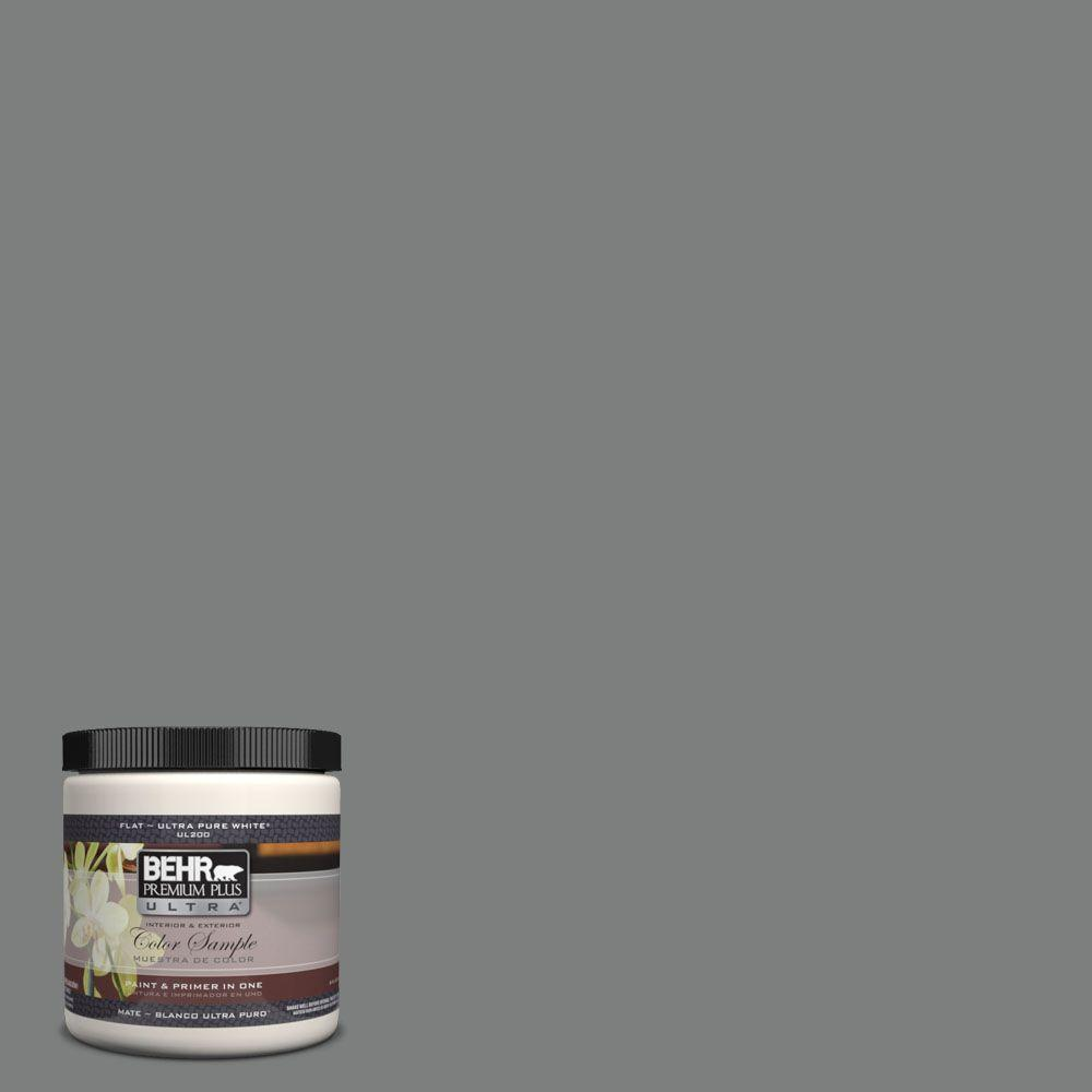 BEHR Premium Plus Ultra 8 oz. #6795 Slate Gray Interior/Exterior Paint Sample