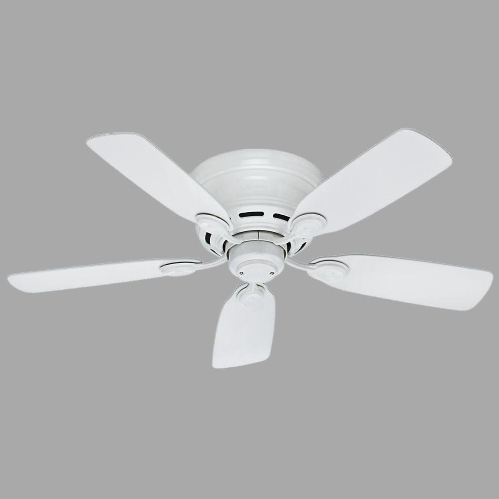 Hunter low profile 42 in indoor snow white ceiling fan 51059 the hunter low profile 42 in indoor snow white ceiling fan aloadofball Image collections