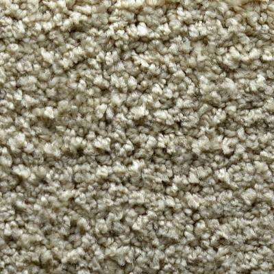 Carpet Sample - Fashion Feature - Color Bethany Pattern 8 in. x 8 in.