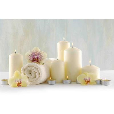 11.75 in. x 15.75 in. LED Lighted Candle Orchid Spa Inspired Canvas Wall Art