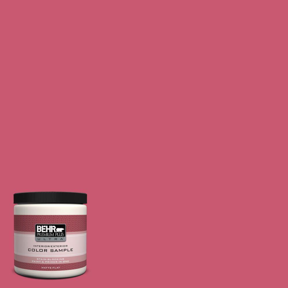 8 oz. #T11-15 Pinkelicious Flat/Matte Interior/Exterior Paint Sample