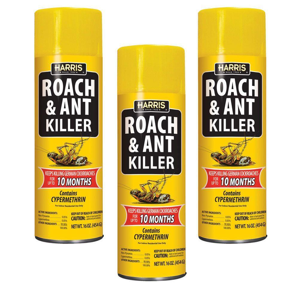Harris 16 Oz. Roach And Ant Killer (3-Pack)-RA16-3PK